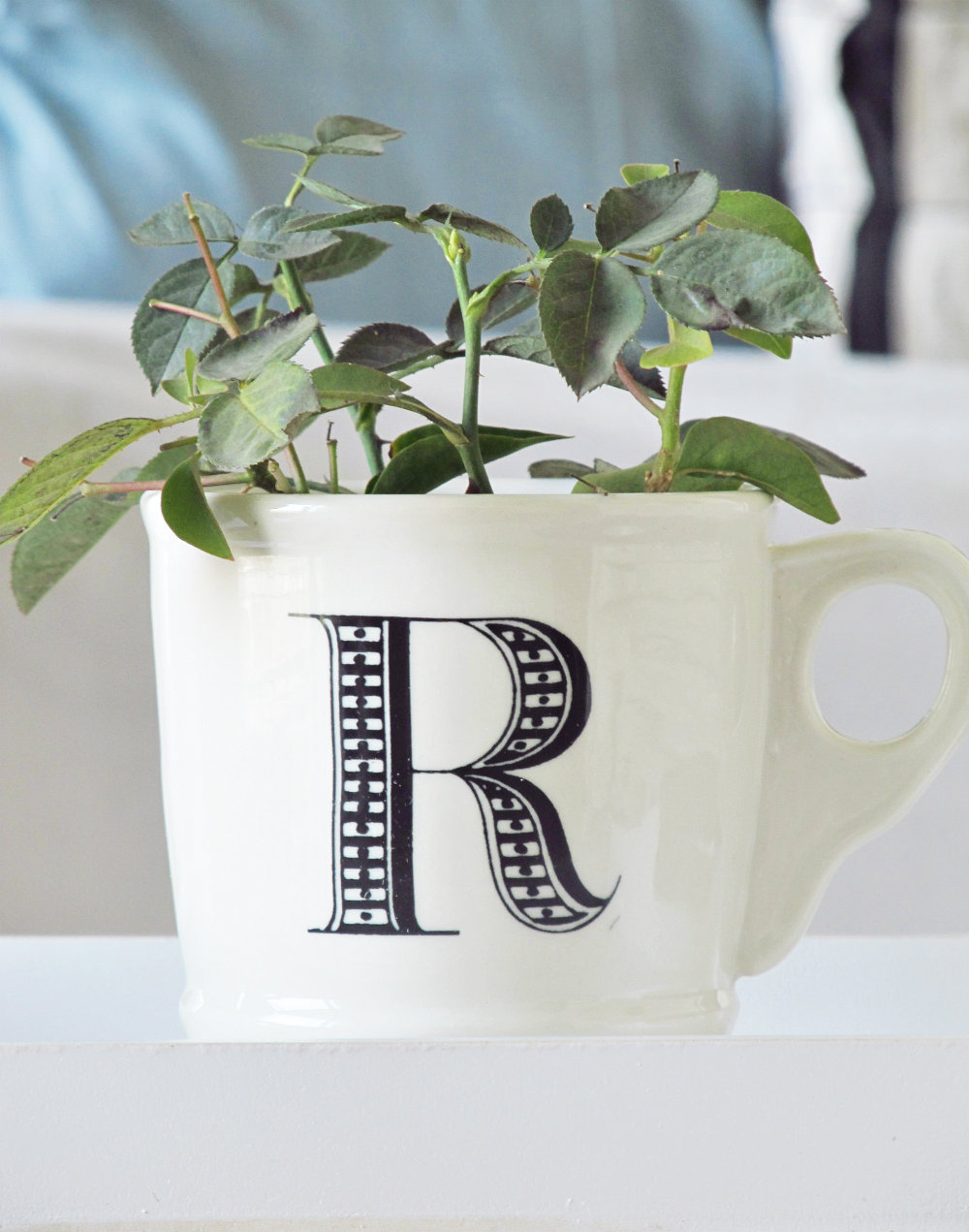 Anthropologie cups 1